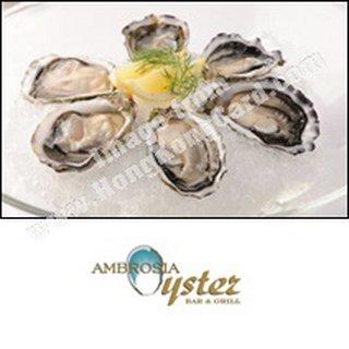 Visa Signature卡尊享極尚優惠禮遇:Ambrosia Oyster Bar & Grill